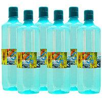 G-PET Fridge Water Bottle Mint 1 Ltr Sea Green - Set Of 6