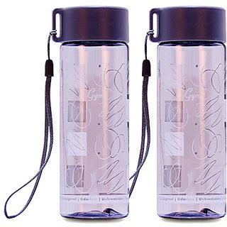 GPET Polycarbonate Gym bottle Grey  Set of 2