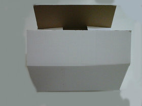 Corrugated Packing White Box 6 Pieces
