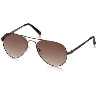 Joe Black JB-735-C3 Brown Aviator Sunglasses