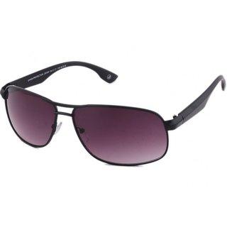 Joe Black JB-600-C1 Purple Rectangular Sunglasses