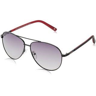 Joe Black JB-770-C3 Purple Aviator Sunglasses