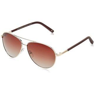 Joe Black JB-770-C2 Brown Aviator Sunglasses