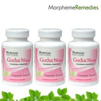 Morpheme Guduchi Supplements For Immune System - 500Mg Extract - 3 Combo Pack