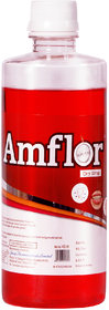 Amflor Oral Rinse Mouthwash - 450ml by GPL ALCOHOL FREE