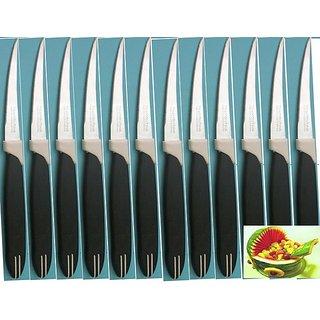 Set of 12 Pcs. Fruit Knives