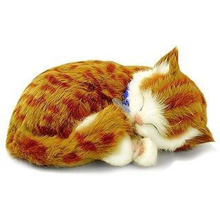 Perfect Petzzz Orange Tabby, Multi Color