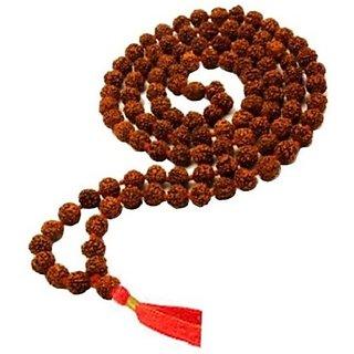 Original Rudraksha Mala 108+1 Beads (20 mm)