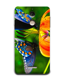 Print Masti Beautiful Yellow Flower In Garden Design Back Cover For Coolpad Note 5