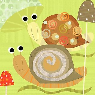Oopsy Daisy Swirly Snails Stretched Canvas Wall Art by Amy Schimler, 14 by 14-Inch