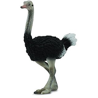 CollectA Ostrich Figure