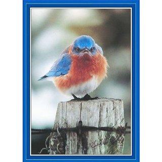Songbird Essentials Puzzle, Mad Bluebird 500 pc