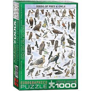 Birds of Prey and Owls 1000-Piece Puzzle
