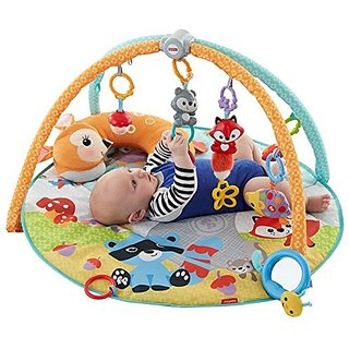 Fisher-Price Moonlight Meadow Deluxe Play Gym