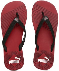 0970bceebc4864 Puma Shoes  Buy Puma Shoes for Men   Women Footwear Online at Best Price