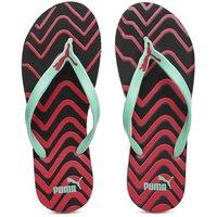 Puma Women's Multicolor Slippers