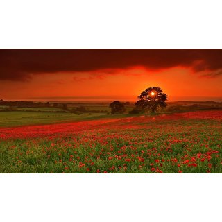 MYIMAGE Beautiful Natural Scene Poster (Paper Print, 12x18 inch)
