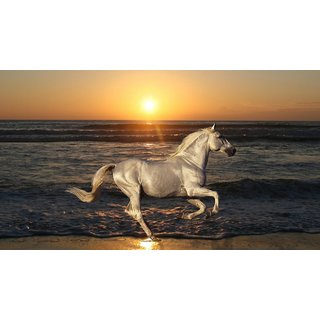 MYIMAGE Beautiful Horses Poster (Paper Print, 12x18 inch)