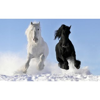 MYIMAGEBlack and White Horse Running Poster (Paper Print, 12x18 inch)