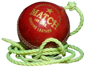 Port Leather Practice Cricket Ball