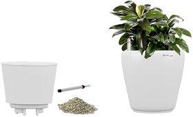 Yuccabe Italia Stoic (White Self Watering Planters)