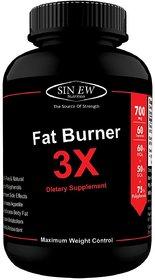 Sinew Nutrition Natural Fat Burner 3X (Green Tea, Green Coffee  Garcinia Cambogia Extract) - 700 mg (60 Veg Capsules)