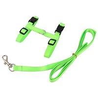 Generic Adjustable Pet Cat Belt Nylon Lead Leash Collar