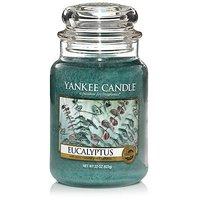 Yankee Candle Company Eucalyptus Large Jar Candle