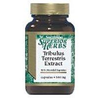 Tribulus Terrestris Extract 500 Mg 60 Caps