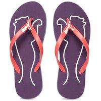 Puma Women's Purple & Orange Slippers