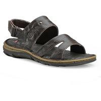 Lee Cooper Brown Casual Sandals