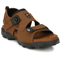 56ff4f35728 Estd 1977 Tan Sandals for Men online in India at Best price on 15th ...