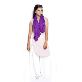 Grishti Womens Purple Chiffon Scarf