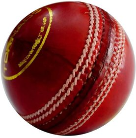 cricket ball in leather