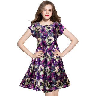 Stylelead Fashion Blue Printed A Line Dress Dress For Women