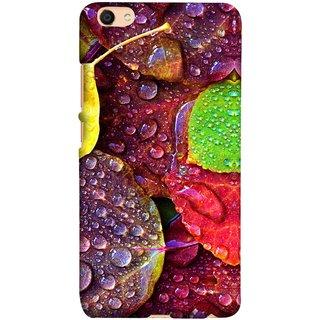 FUSON Designer Back Case Cover for Vivo V5 (Big Leaf Leaves Lotus Raindrops Forest Raining Season)