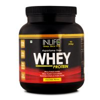 INLIFE Whey Protein Powder (Vegetarian) 1lb Chocolate Flavour