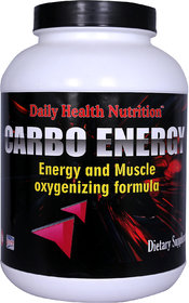 Dhn Carbo Energy 3Kg(Vanilla) With Free Dhn Metabolism Modifier