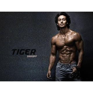 MYIMAGE Handsome Tiger Sharoff Digital Printing Canvas Cloth Poster (Canvas Cloth Print, 12x18 inch)
