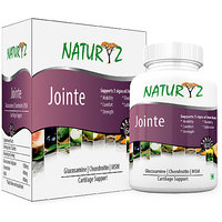 Naturyz Jointe Glucosamine Chondroitin With MSM For Car