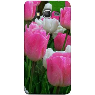 FUSON Designer Back Case Cover for Samsung Galaxy Grand Prime :: Samsung Galaxy Grand Prime Duos :: Samsung Galaxy Grand Prime G530F G530Fz G530Y G530H G530Fz/Ds (Roses Flowers Fresh And Nice Best Wallpaper Designs)