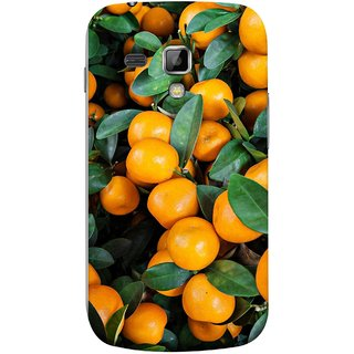 FUSON Designer Back Case Cover for Samsung Galaxy S Duos S7562 (Orange Tree Farm Park Beautiful Green Leaves)