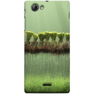 FUSON Designer Back Case Cover for Sony Xperia J :: Sony Xperia J ST26i :: Sony Xperia J ST26a (Sheaves Of Recently Harvested Rice Hanging To Dry)