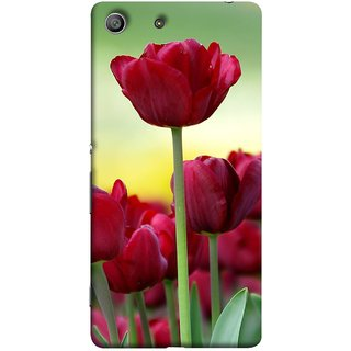 FUSON Designer Back Case Cover for Sony Xperia M5 Dual :: Sony Xperia M5 E5633 E5643 E5663 (Dark Bold Red Roses Chocolate Hearts For Valentines Day)