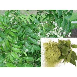 Neem - Veppilai (Leaves) Powder 200Grams (50GramsX4Packs)