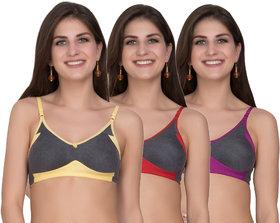 Maroon Multi Color Cotton Set of 3 Women's Bra Combo