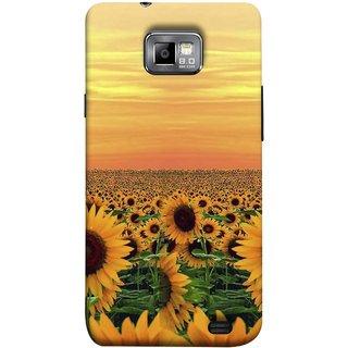 FUSON Designer Back Case Cover for Samsung Galaxy S2 I9100 :: Samsung I9100 Galaxy S Ii (Oils Vitamin Summer Seasons Drink Tasty Food Wallpapers )