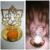 Astro Guruji New Shadow Diya Crowned Ganesha