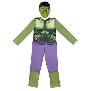 Avengers The Hulk Animated Full Dress Up Costume