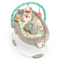 Disney Baby Winnie The Pooh Bouncer, Dots And Hunny Pot